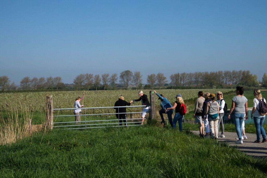 Klimmen over een hek om op de Herverkavelingsdijk te komen
