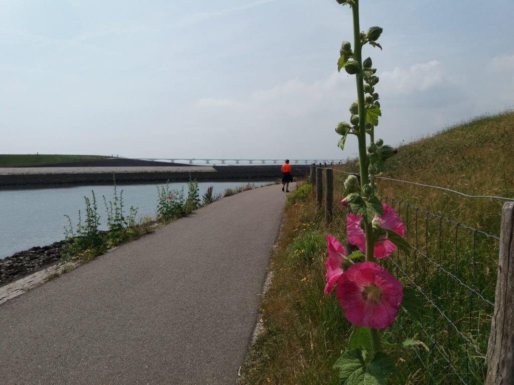 De Zeelandbrug in zicht