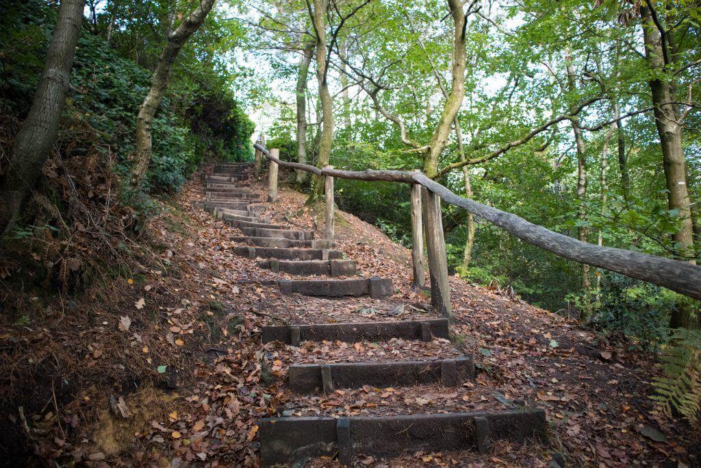 De Woodland Trail betekent afdalen en klimmen
