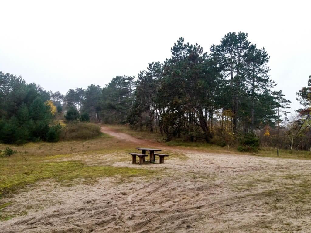 Zandverstuivingen en bos wisselen elkaar af