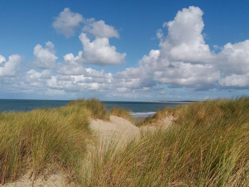 Schitterend uitzicht vanuit de duinen over de Noordzee