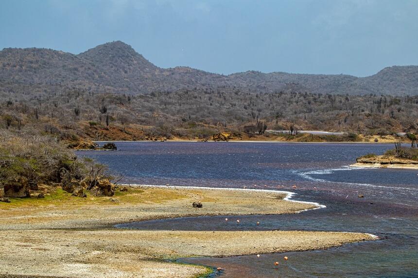 Het zuidoosten met de zoutbaaien en flamingo's