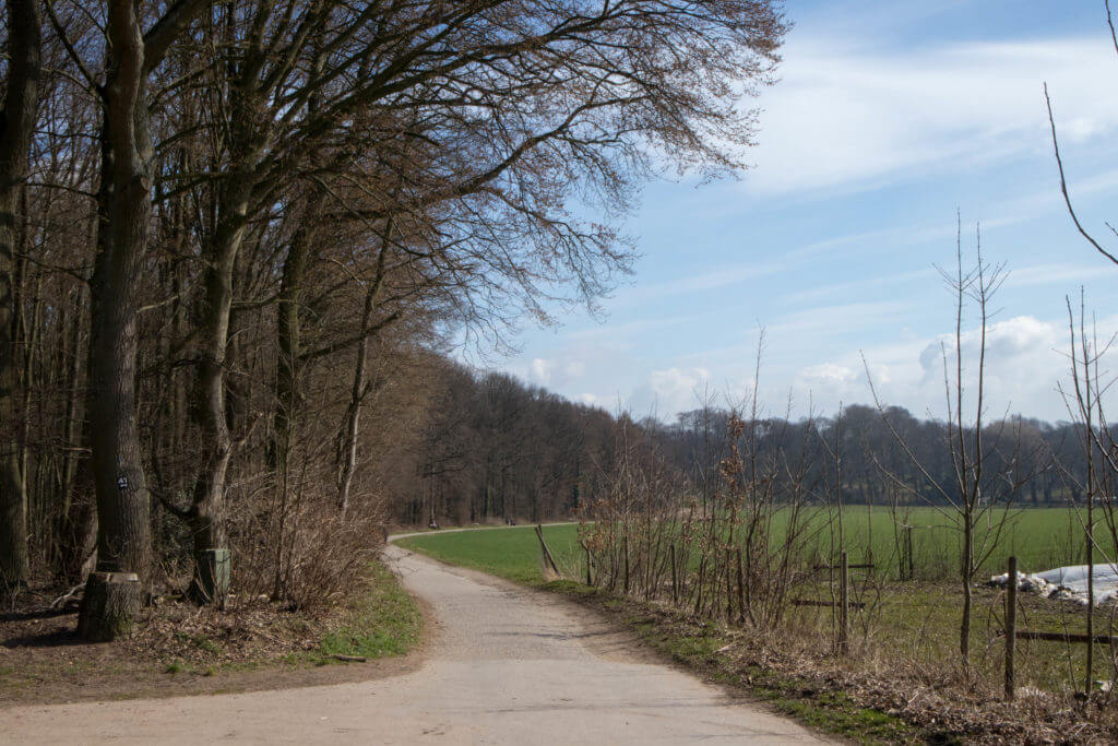 Wandelen door bos en langs platteland in Düsseldorf
