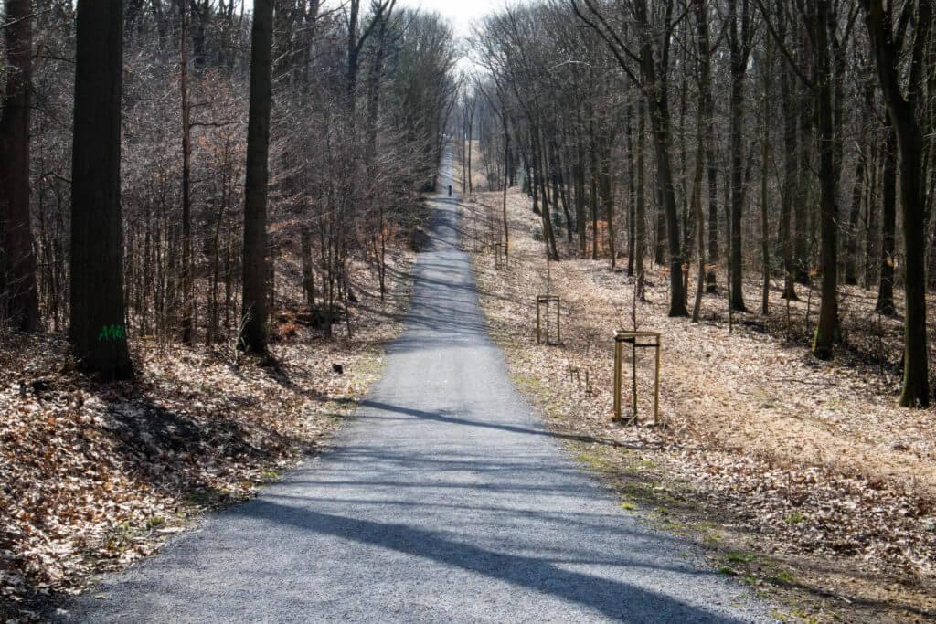 Hoogte verschillen in het Aaper Wald bij Düsseldorf