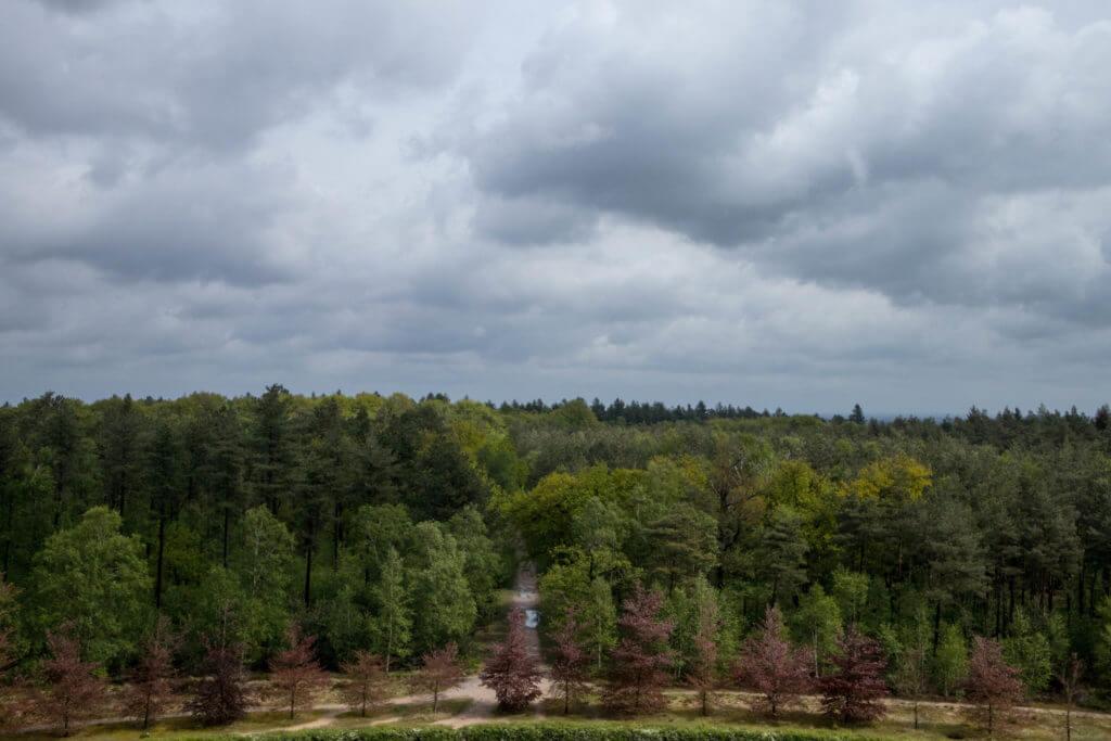 Het uitzicht vanaf de pyramide van Austerlitz