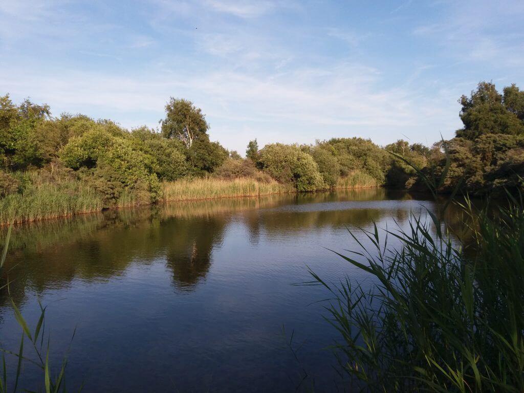Zoutwater kreek op de Kabbelaarsbank