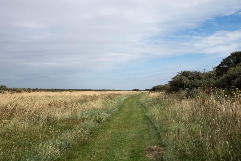 Wandelen over grasland door de Kwade Hoek