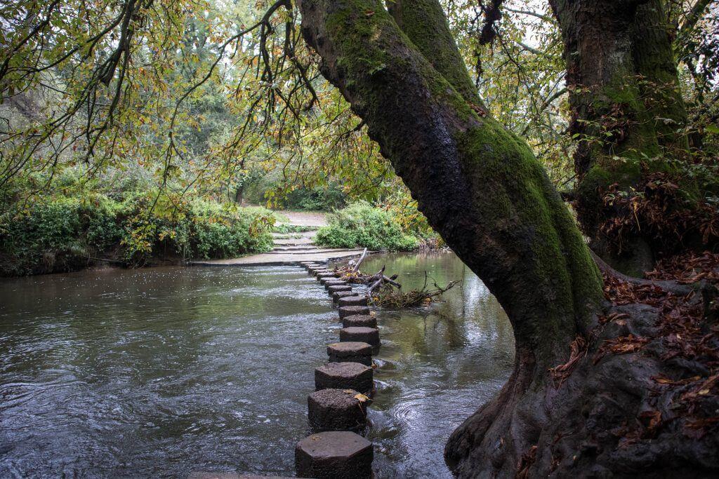 De Stepping Stones van Box Hill
