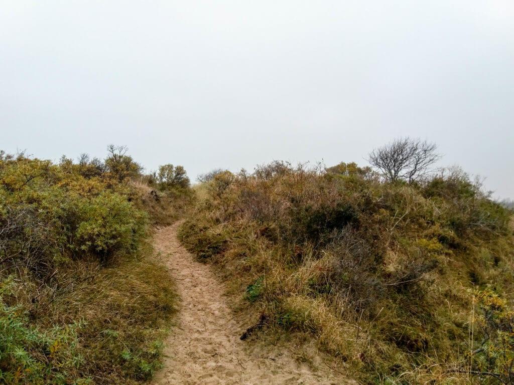 De duinen zijn hier best hoog, de uitzichten daarom adembenemend