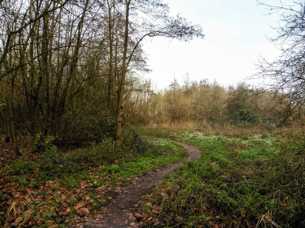 Het pad kronkelt langs de rand van bos en akker