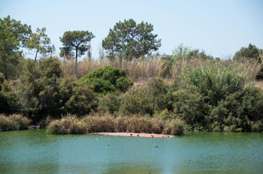 Een van de meren in Natural Park da Ria Formosa