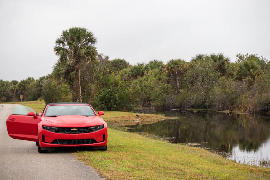 Ik sta voor de auto vlakbij alligators in het water