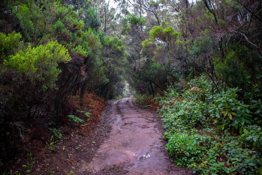 De trap is niet meer. Het pad is steil en glad.