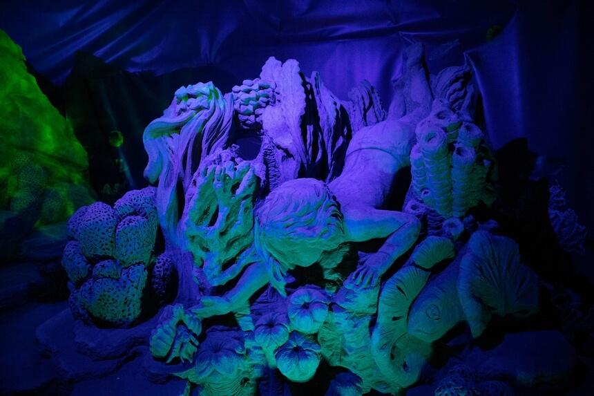 De onderwaterwereld van zand