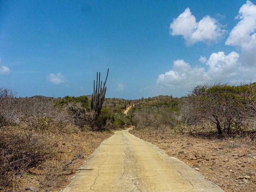 Er lopen twee wegen door Washington Slagbaai Nationaal Park Bonaire