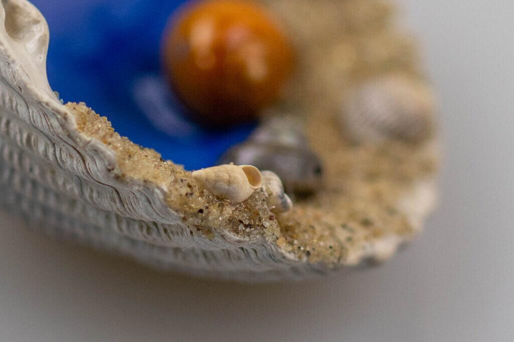 schelpencadeautje miniatuur close up